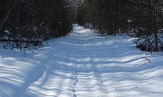 Little-Loop-Trail-01-mxq6ov