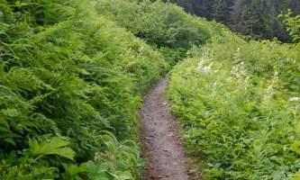 Lost-Lake-Trail DSCN0214-oqio0v