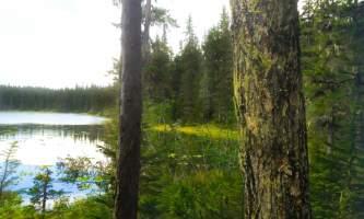 Meridian-Lakes-04-899304028-n8vpdf