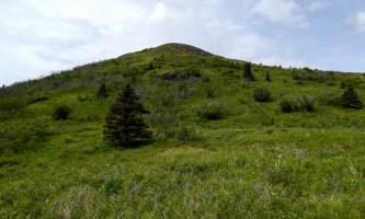 Mile-High-Saddle-Trail-Mt-Magnificant DSCN0327-oqiodh
