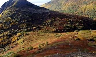 Mile-High-Saddle-Trail-Mt-Magnificant Mile_High_Saddle_Trail-Mt-Magnificant-oqio7p