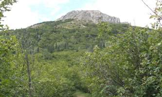 Mount_Healy_Overlook_Trail DSC00226-oqu6i0