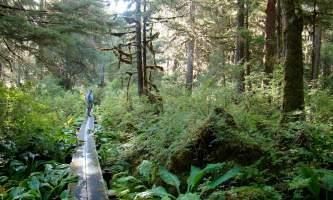 Naha-River-Trail-nhvo2h