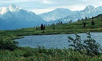 Nelchina-River-Trail-nhvo3w