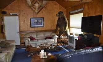 Northwoods-Lodge-living_room_2018-pfb6e4