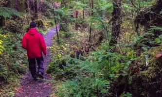 Perseverance-Trail-PERSEVERANCE_Trail_Hiker-p5uqqm