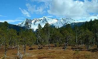 Point-Bridget-Trail-nhvs0l