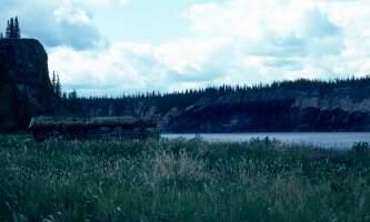 Porcupine-21-mj5jl3