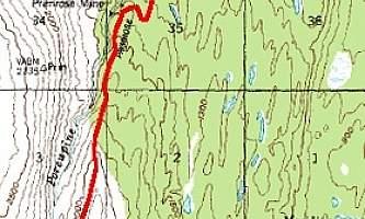 Primrose-Trail-2-nhvs4d