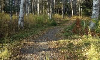 Ray-Clapp-Trail-IMG_1073-nz5xtt