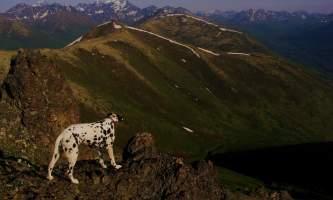 Rendezvous_Peak-PICT3354-Copy-p935f6