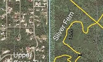 Silver_Fern_Trail-nhvvlv