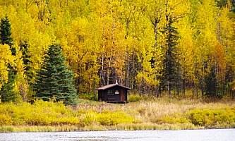Swan lake cabin 01 mopqbd