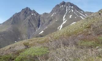 Twin-Peaks-Trail DSC00795-ov8xcl