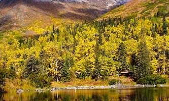 West swan lake cabin 03 moprne