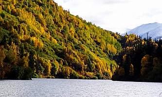 West swan lake cabin 04 moprnj