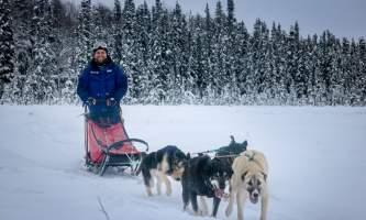 Alaska mushing school img 6226 ojzy2b