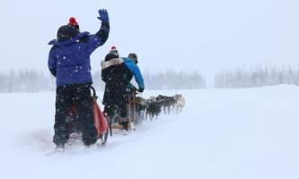 Alaska mushing school img 6483 okpd3j
