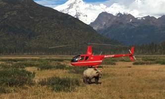 Alaska-ultimate-safaris-helicopter-flightseeing-IMG_3167-p5lknq