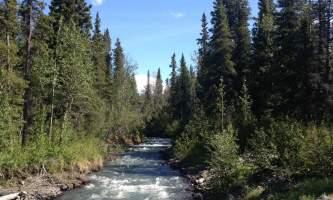 Carlo-creek-lodge-creek-odyso8