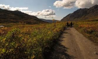 Craigie-creek-Craigie_Creek_Trail-pivdcc