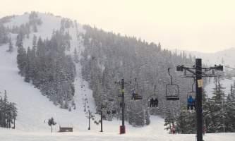 Eagle-crest-ski-area DSC03788_Ptarmigan_je-os7wf5