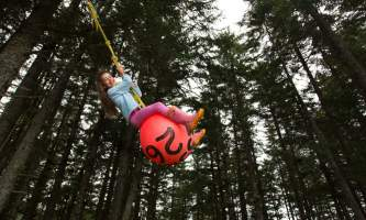 Hook point cabin ball swing 16 a7010 nrs0rb