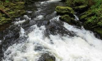 Lunch-creek-lunch-creek-carolyn-brown-owuh0d