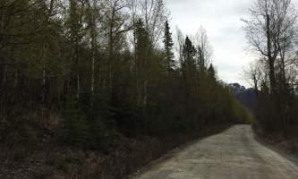Maud-road-lakes-trail IMG_8334-ov1nsv