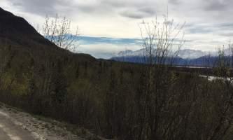 Maud-road-lakes-trail IMG_8337-ov1nue