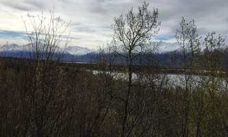 Maud-road-lakes-trail IMG_8338-ov1nuw