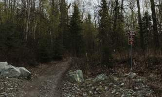 Maud-road-lakes-trail IMG_8340-ov1nw0