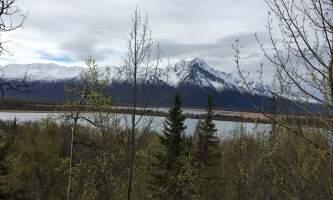 Maud-road-lakes-trail IMG_8344-ov1ny9