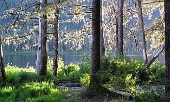 Petersburg lake cabin 02 mqicmd