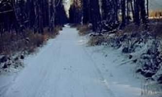Plumley-maud-trail11425_10101691803069882_1982902472220595912_n-ov1o3g