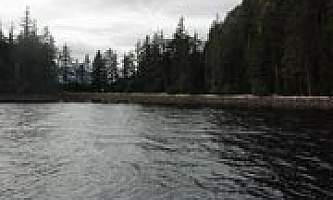 Point amargura cabin 03 mqicqb