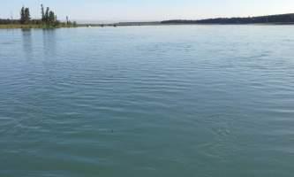 Soldotna-bnb-alaska-fishing-charters-IMG_1230-ohfj6v