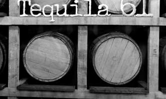 Tequila 61 66 a p9i0s3