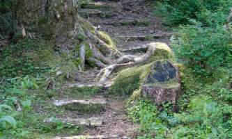 Trails-horsetail-falls-andrea-korbe-pf22tj