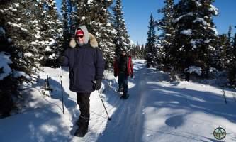 Traverse alaska winter activities mf201703010010 pjyet0