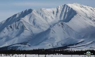 Traverse alaska winter activities mf201803100012 pjyeti