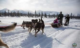 Traverse alaska winter activities mf201803150002 pjyeto