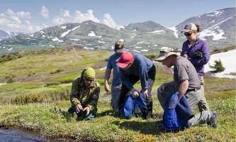 Ultimate-alaska-adventure-19-Wilderness_Hiking_from_KBL-pdvulv