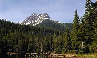 Young lake north cabin 01 mqidzl
