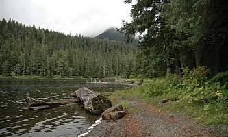 Young lake north cabin 05 mqie03
