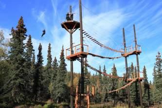 2016 Denali Park Zipline 282829 ogg0wp