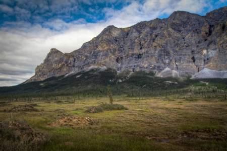 Pingo Field Below Sukakpak Mountain