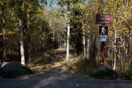 Burney's Trail