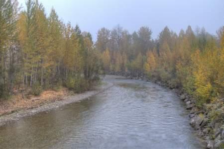 Montana Creek Combat Fishing