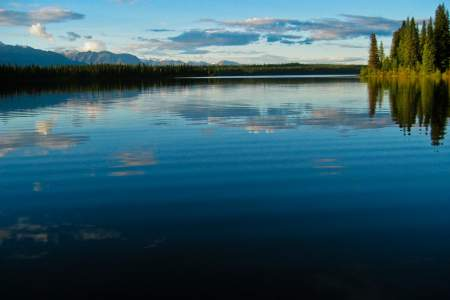 Alaska Nature Guides Wilderness Day Hikes